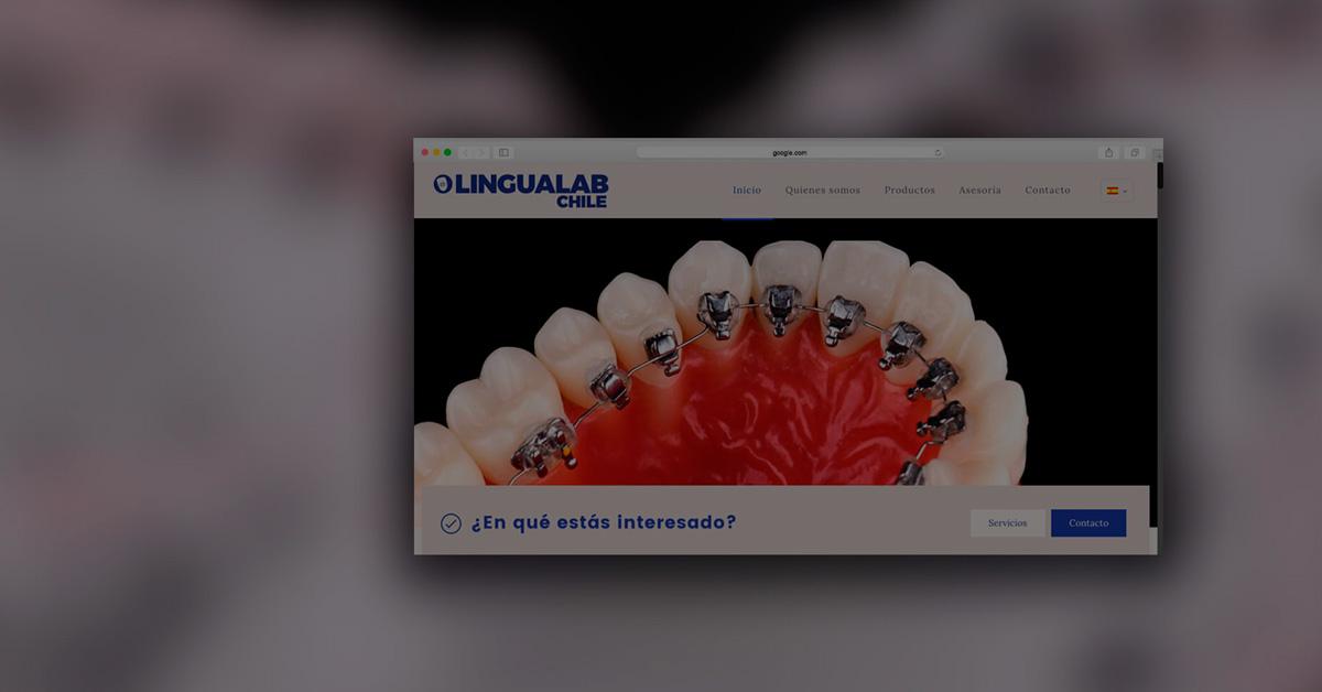 lingualab1